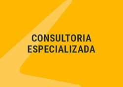 Consultoria Especializada